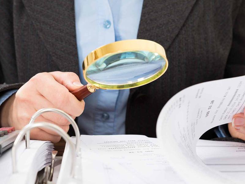 Подготовка к налоговой проверке индивидуальных предпринимателей и микроорганизаций